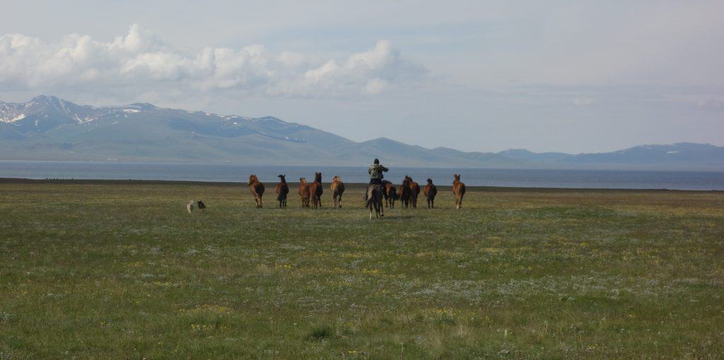 Horse riders at Lake Song-Kul, Kyrgyzstan