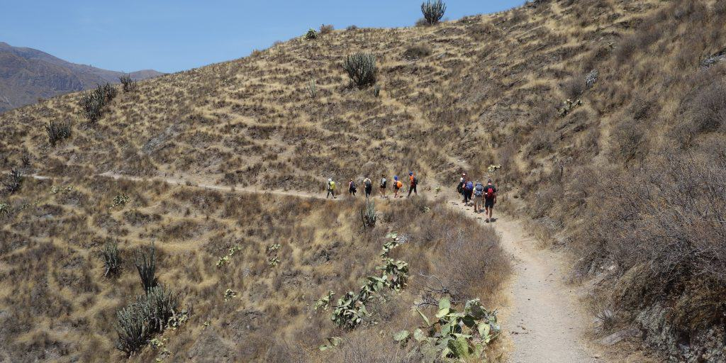 Colca Canyon hike in Peru