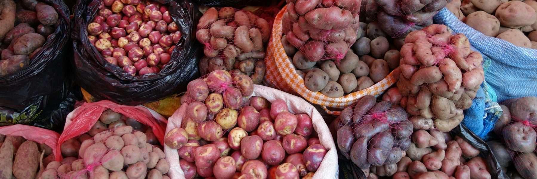 Potatoes at Mercado Rodriguez, La Paz, Bolivia