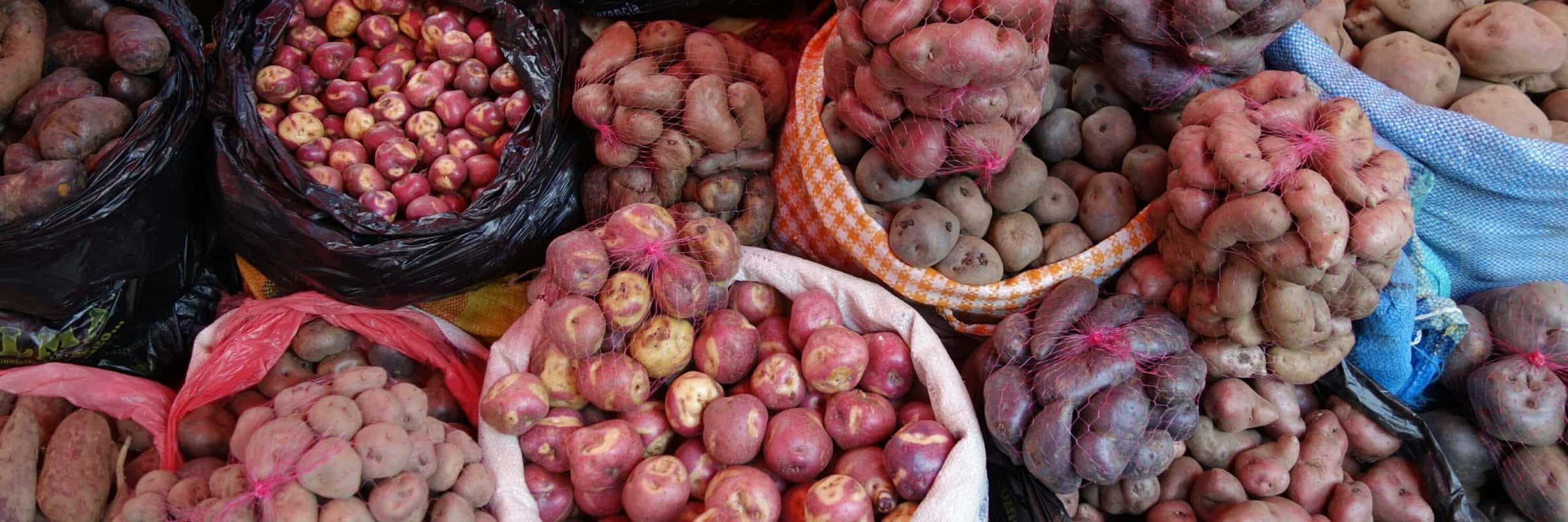 Potatoes at Mercado Rodriguez, La Paz, Bolivia