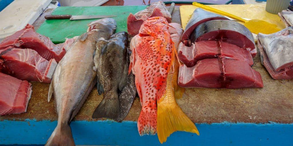 Fish at a market in Ecuador