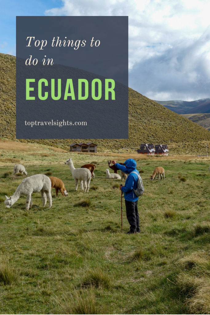 Pinterest image for top things to do in Ecuador