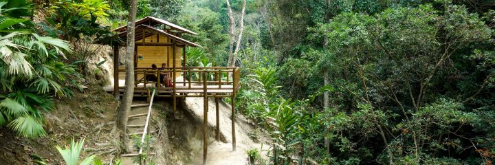 Mountain hut in the jungle